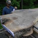 walnut_crouch_wood