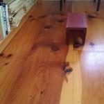 Wide Pine Floor 2